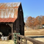 Barn Exterior Photo of Atlanta Real Estate